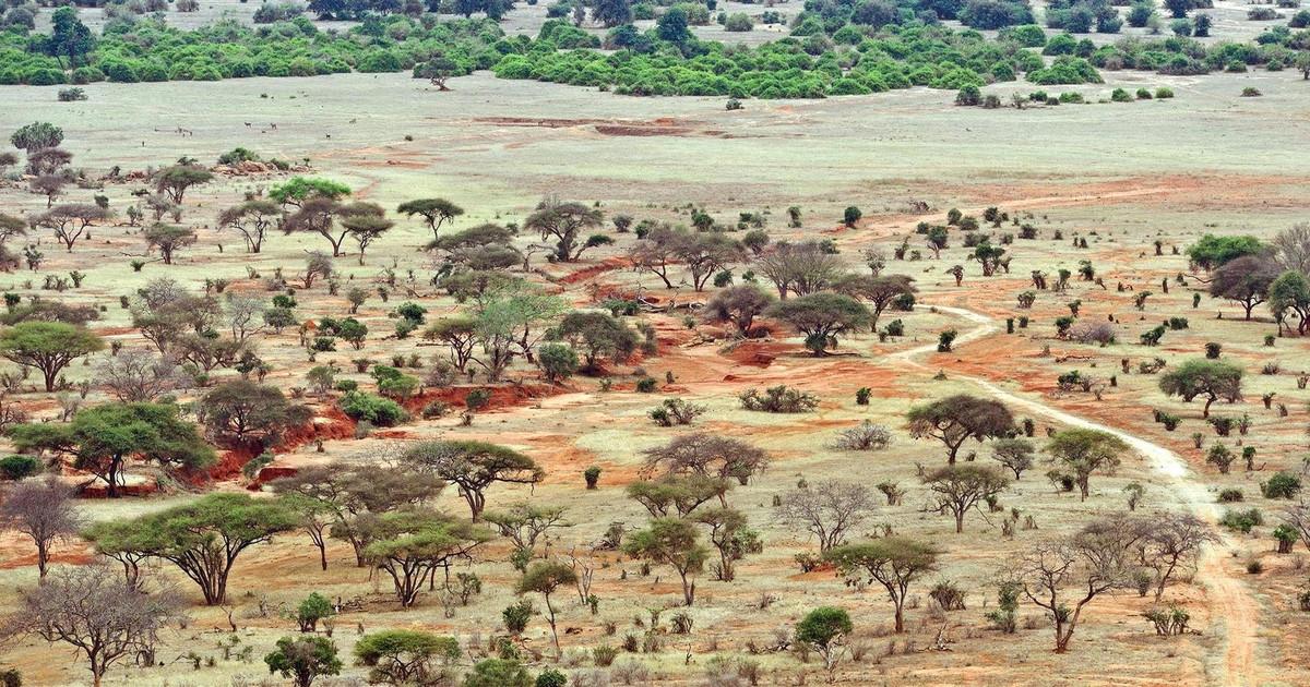Tsavo West & East National Park
